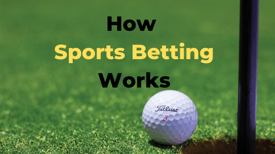 How sport betting works global transfer bitcoins